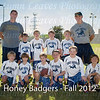 Honey_Badgers-3-20121028-PS
