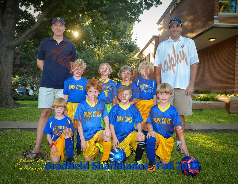 Bradfield_Sharknados-40-20130924-PS