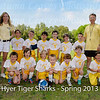 Tiger_Sharks-51-20130416-PS
