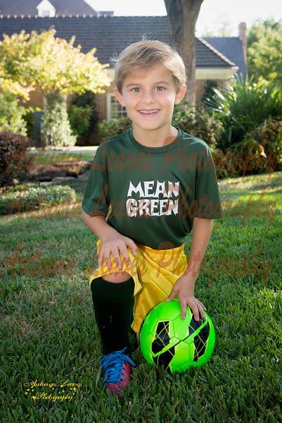 MeanGreen-14-20131008-PS