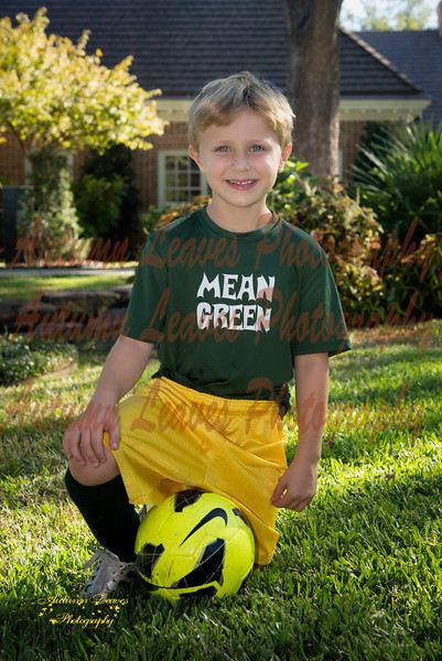 MeanGreen-53-20131008-PS