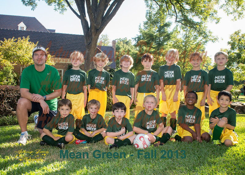 MeanGreen-47-20131008-PS