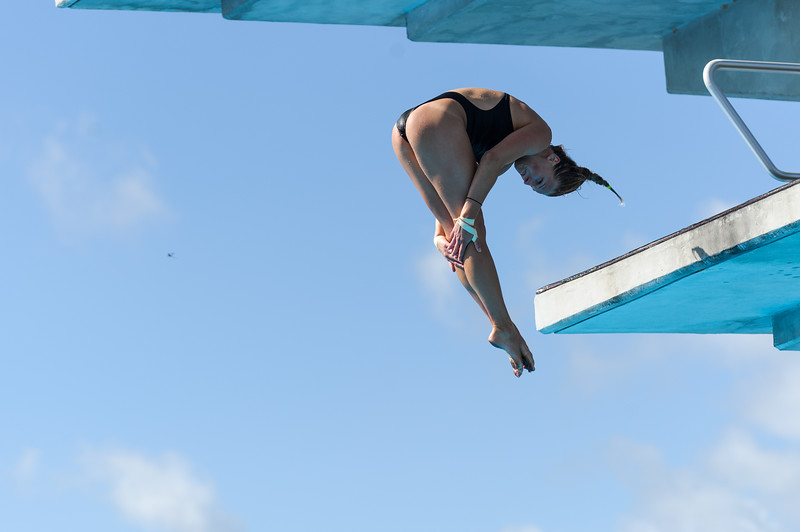 Tallahassee, FL - July 21:  Numerous divers from around the US compete in the US DIving Southeast Regioinal Championship in platform competition at Morcom Aquatic Center in Tallahassee Florida on July 21, 2013.