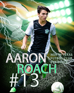 Custom Sports Poster - Contact me if you want one for your athlete!