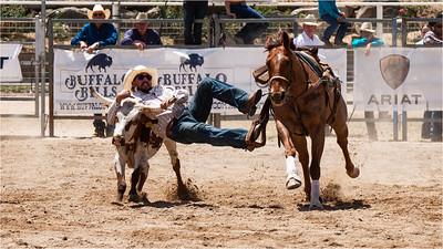 Steer Wrestling 01