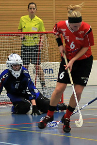 Sport Unihockey Frauen NLB Unihockey Leimental Saison 2008/2009