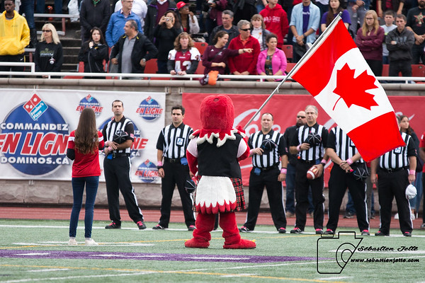 Redmen McGill vs Stingers Concordia 14-10-17