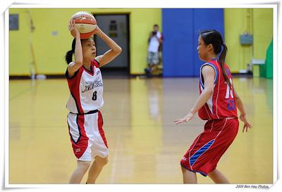 2009年香港籃球聯賽(女子甲組)