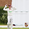 South Wilts CC (2nd XI) v Trojans CC-5472