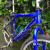 1990s' GT Mountain Bike: £20