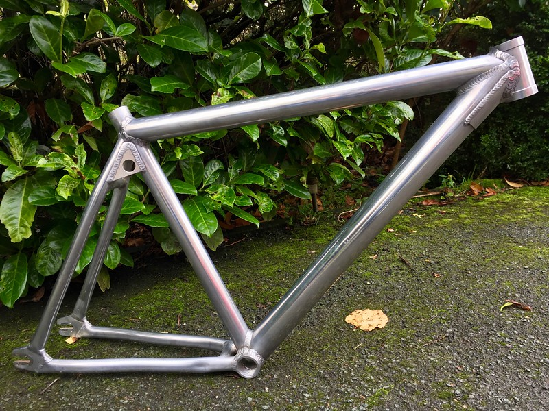 'Bike Mielec' aluminium frame: £60