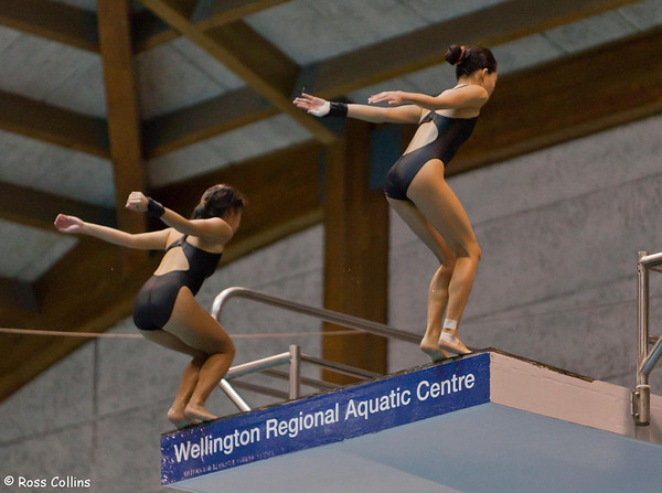 Asia Pacific Diving Invitational, Wellington, 8 October 2013