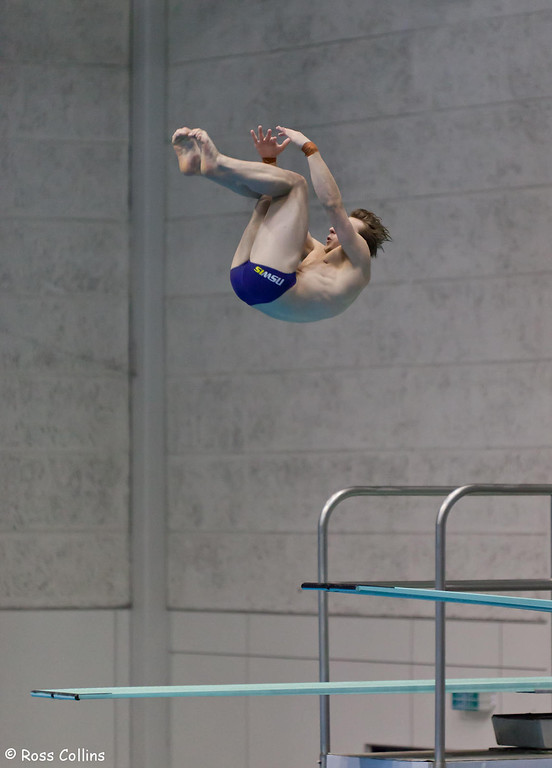 Asia Pacific Diving Invitational, Wellington, 6 October 2013