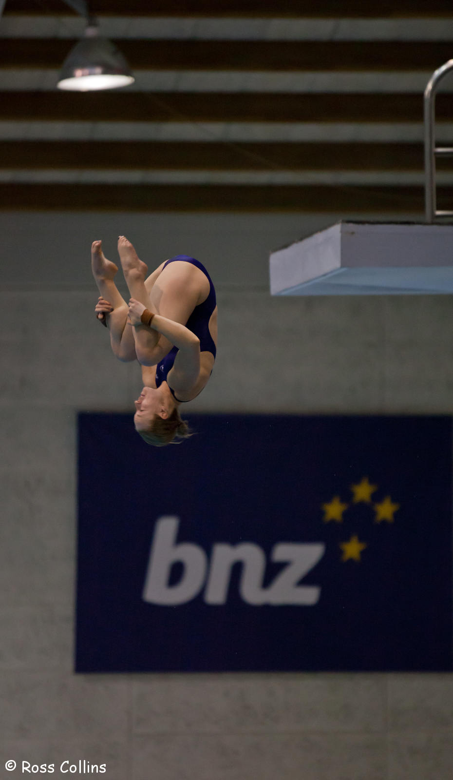 Asia Pacific Diving Invitational, Wellington, 7 October 2013