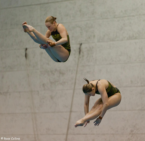 Asia Pacific Diving Invitational, Wellington, 8 October 2013