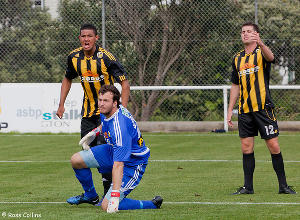 Team Wellington vs. Auckland City, ASB Premiership, David Farrington Park, 10 November 2013