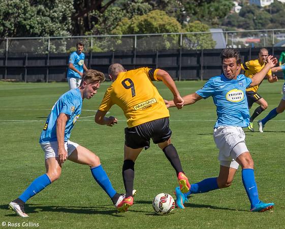Team Wellington vs. Wanderers SC, David Farrington Park, Wellington, 1 March 2015