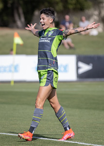 Michelle Heyman record goal celebration