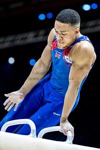 23rd Mar 2019, Mens Gymnastics World Cup, Resorts World Arena, Birmingham