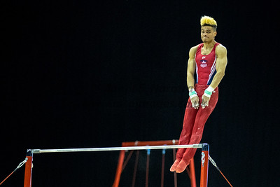Mens' World Cup Gymnastics, Birmingham Arena, 21st Mar 2018