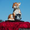Hero World Challenge, Isleworth Golf & Country Club, Windermere, Florida - 4th December 2014 (Photographer: Nigel G Worrall)