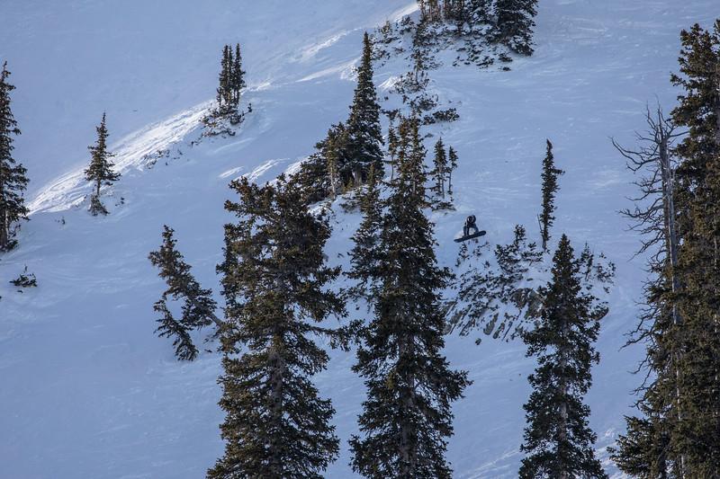 Snowbird_National2010.JPG