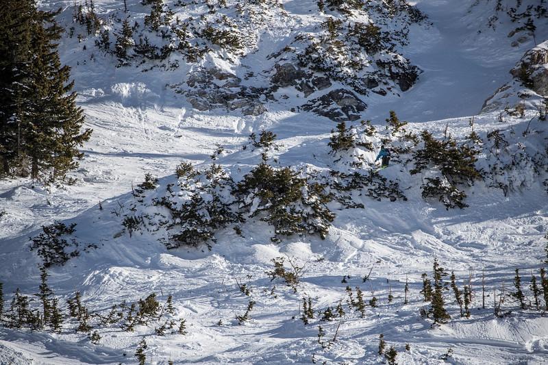 Snowbird_National2064.JPG