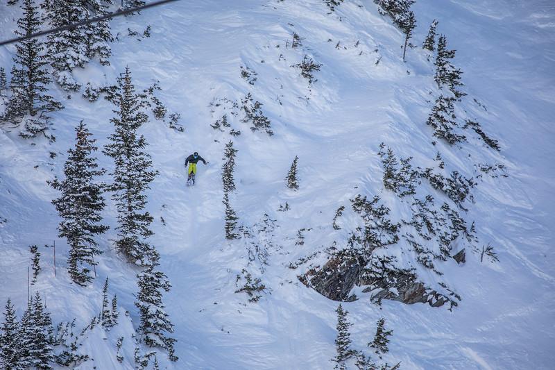 Snowbird_National2006.JPG