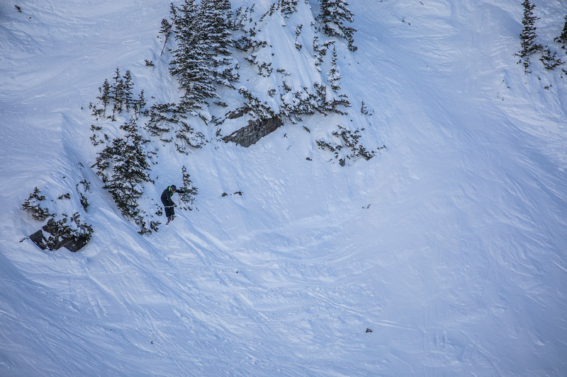 Snowbird_National2007.JPG