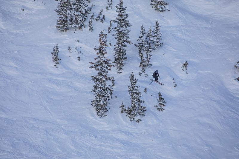 Snowbird_National2003.JPG