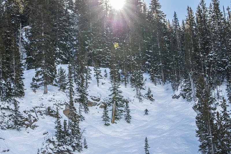Snowbird_National2033.JPG