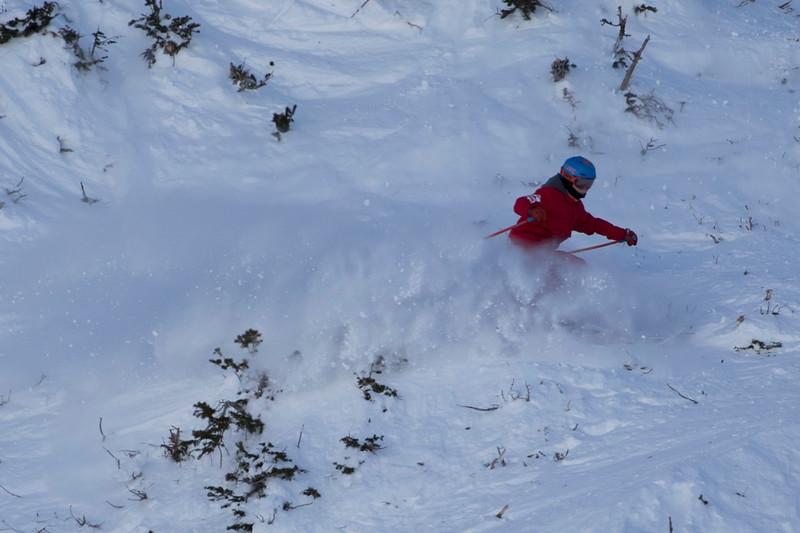 Snowbird_National2074.JPG