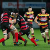 Images from the @Indigo Welsh Premiership rugby match between Aberavon and Carmarthen Quins.