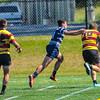 2017-09-23 SU Sharks Rugby vs GT A Side BJS_6993