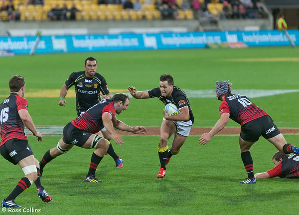 Wellington Lions Rugby