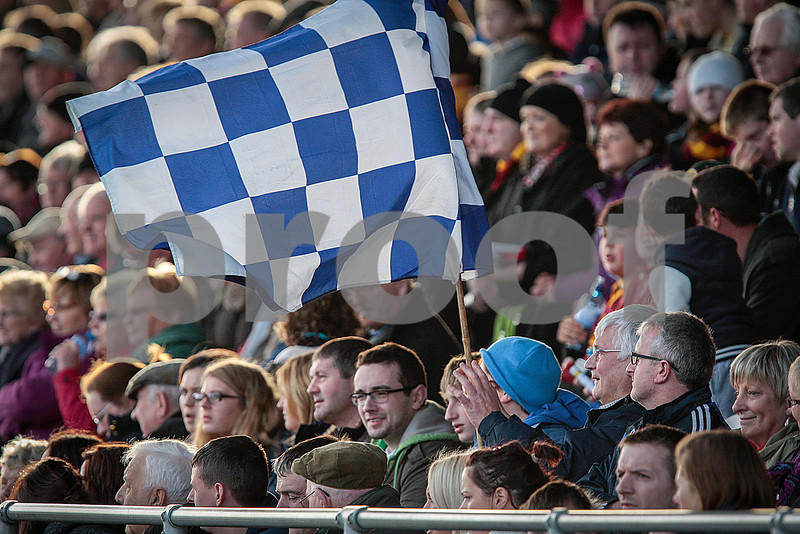 171113 The Munster Club Intermediate Hurling Championship Final Ballina v Youghal. Ballina fans raise the colours at Mallow.  Photo Andy Jay.