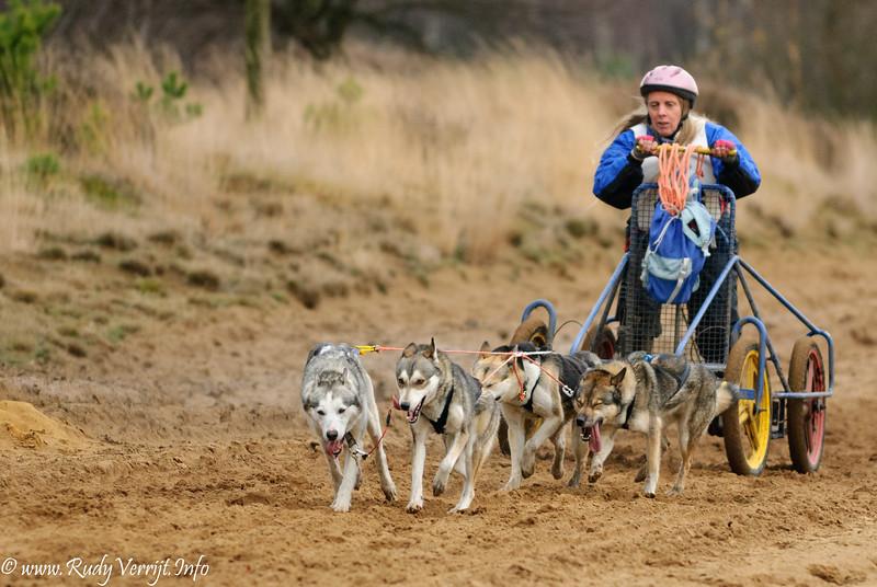 Pampa Sleddog Race - Helchteren