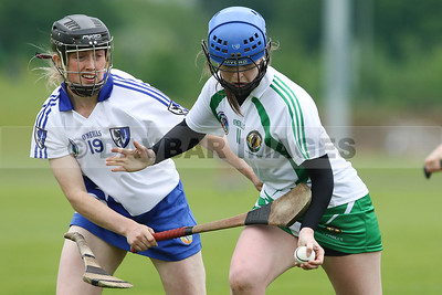 Aoife Bugler (Leinster) drops her hurley in the Junior Interprovincial Camogie Tournament at Abbotstown (May 2017)