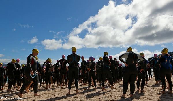 New Zealand Ocean Swim Series, Capital Classic, Oriental Bay, Wellington, 29 January 2011