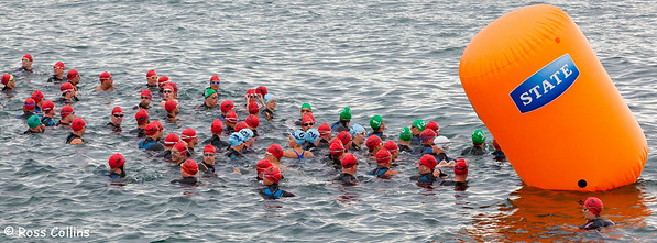 New Zealand Ocean Swim Series, Capital Classic, Wellington Harbour, 29 January 2012