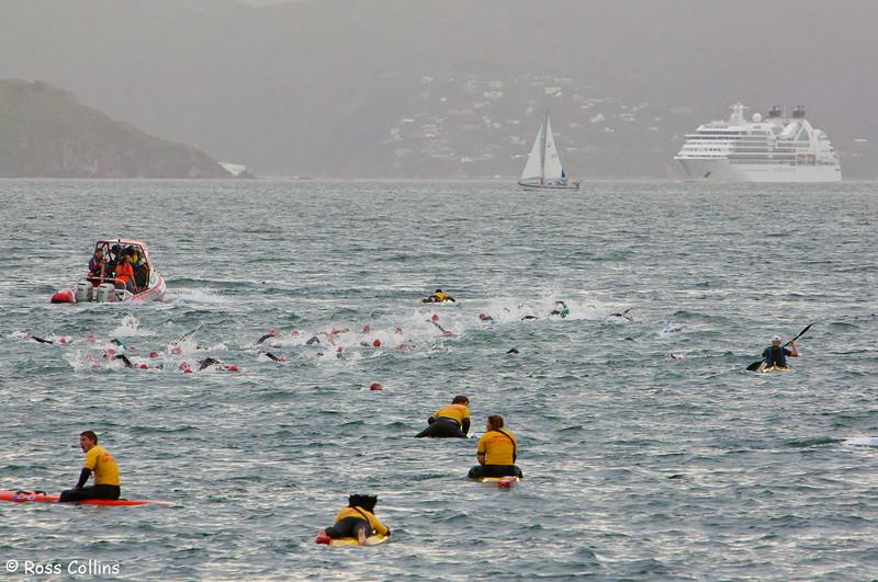 New Zealand Ocean Swim Series, Capital Classic, Wellington Harbour, 29 January 2012