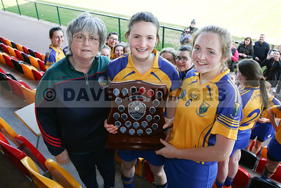Wicklow Camogie 2008-18