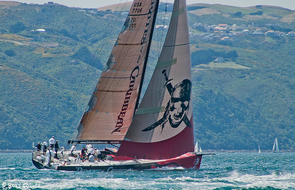 Volvo Ocean Race 2005 - 2006, Wellington, 16-19 February 2006