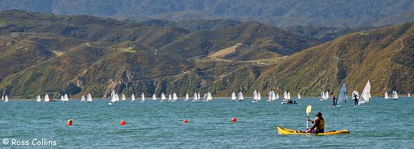 NZ Optimist Championships, Worser Bay, April 2004