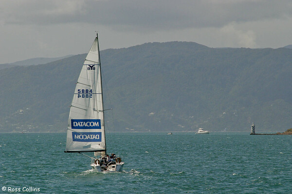 Yacht Match Racing, Evans Bay, October 2005