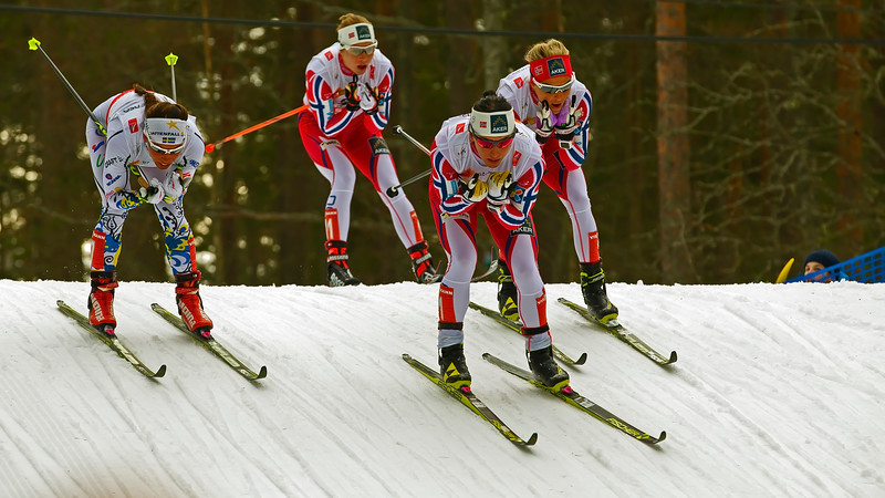 World Championship in cross country skiing in Falun, Sweden 2015