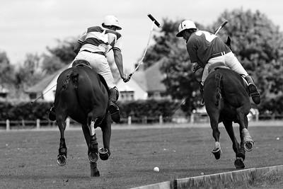 St Albans Polo Club