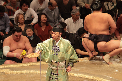 May 2016 Grand Sumo Tournament, Tokyo