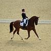 A. Cornelissen (Dutch) riding Parzival, Individual Dressage, London Olympics - 2012