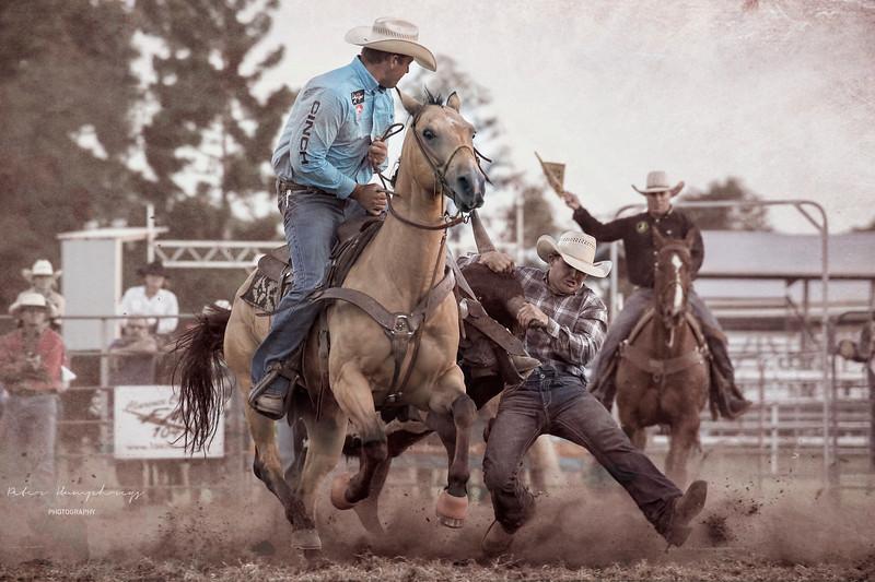 Wild Cowboys.